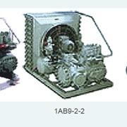 Агрегат компрессорный с конденсатором воздушного охлаждения 1АВ7-2-0 фото