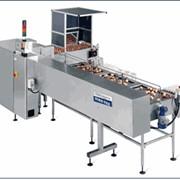Оборудование для сортировки яиц от 10 000 фото