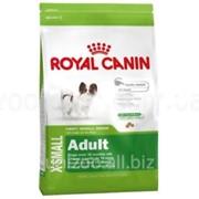 Сухой корм для собак Royal Canin X-SMALL ADULT 0,5 кг фото