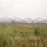 Строительство теплицы из металлоконструкций в Краснодарском крае фото