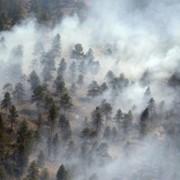 Беспилотный мониторинг пожаров фото