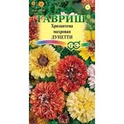 Цветы Хризантема Махровая смесь (0,5г) фото