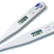 Термометр Termoval Basic фото
