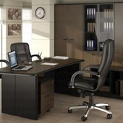 Мебель офисная, вариант 65 фото
