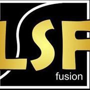 Разработка бизнес-приложений: свойство-ориентированная платформа LS Fusion фото