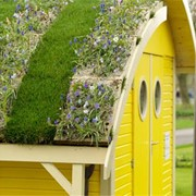 Устройство цветников и садов на крышах фото
