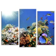 Картина Подводный мир фото