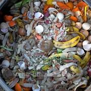 Утилизация пищевых отходов фото