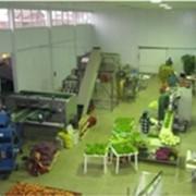 Консультативный центр фото