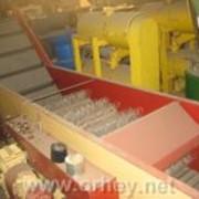 Машины плодомоечные со щетками (леска) для овощей и фруктов. фото