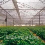 Пленка для роста растений фото