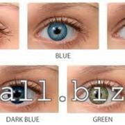 Линзы цветные Cooper Vision Biomedics Colors Premium Сила от -8,00 до -0,50 фото