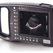Портативный цифровой ультразвуковой сканер для ветеринарии МУЛЬТИСКАН (MULTISCAN) фото