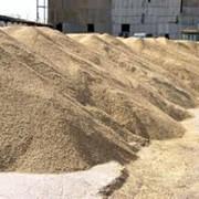 Хранение и перевалка зерновых. фото