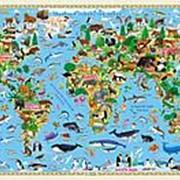 """Карта настенная Геодом """"Наша планета. Растительный и животный мир"""", бумага, 58 х 38 см., 4122 фото"""