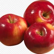Яблоки продажа фото