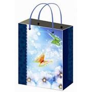 Пакет ламинированный подарочный Premium (264*327*136) фото