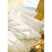 Подушка для аллергиков, Морфеус, антиаллергенная фото