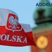 Курсы польского языка фото