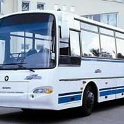 Перевозка пассажиров. Аренда автобуса паз-4230 авр фото