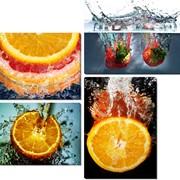Картина модульная Цветы макро 2 фото