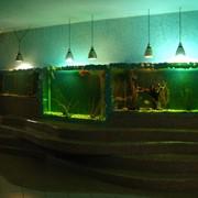 Аквадизайн и обслуживание аквариума фото