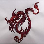 Компьютерная вышивка Дракон фото