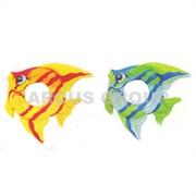 Круги Intex рыбки фото