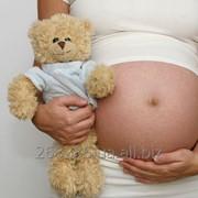 Суррогатные мамы фото