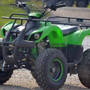 Квадроцикл ATV 006 Hammer фото