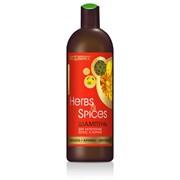 Шампунь для укрепления волос и корней фенхель-арника-зверобой Herbs and Spices фото