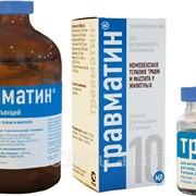 Препараты гомеопатические ветеринарные Травматин фото