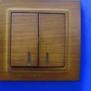 Выключатель 2-х полюсный с подсветкой ZENA модуль вишня 609-012800-236 фото
