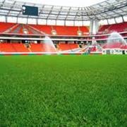 Строительство и оснащение футбольных стадионов фото