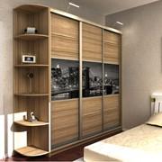 Шкаф-купе для комнаты отдыха арт 18.49-29 фото