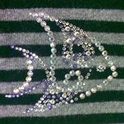 Инкрустация стразами. Инкрустация кристаллами, пайетками вышивка. Инкрустация Swarovski. Отделка стразами, отделка одежды стразами, кристаллами Киев фото