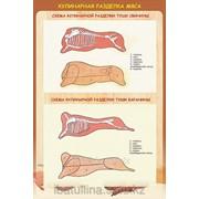 Плакат Обработка мяса Г.16 фото