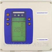 Gasmaster Контрольная панель для мониторинга газовой и пожарной опасности фото