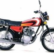 Мотоциклы Allegator YH125-2S5 фото