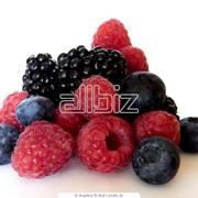 Ягоды замороженные от производителя. Большой выбор замороженных ягод, фруктов, овощей. Купить ягоды фото