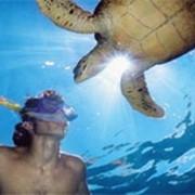 Земли для организации туризма на Сейшелах фото