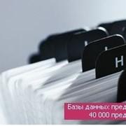 Услуги информации в сфере потребительского рынка Базы данных фото