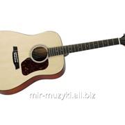 Акустическая гитара HAWTHORNE HD220/B фото