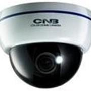 Цветная купольная видеокамера для внутренней установки CNB-DBM21S фото