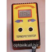 """Цифровой микропроцессорный терморегулятор для инкубатора ЦТР-2 """"Рябушка"""" фото"""