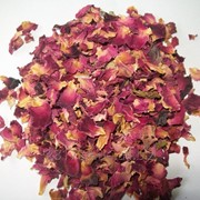 Чайная роза(лепесток) фото