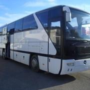 Пассажирские перевозки, аренда автобусов и микроавтобусов в Киеве фото