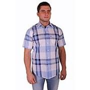Рубашка арт.3900 Тримфорти фото
