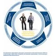 Консалтинговые и образовательные услуги фото