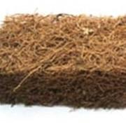 Кокосовое волокно Койра фото